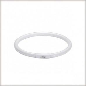 Leuchtstofflampe T5, 2GX13, 22 W, weiß